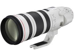 Canon EF200-400mm F4 L IS USM